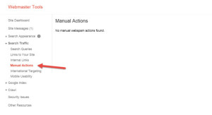 Manual Action Google Webmaster Tools